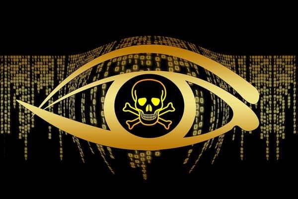 Author Releases Private Key Unlocking Petya/GoldenEye Ransomware