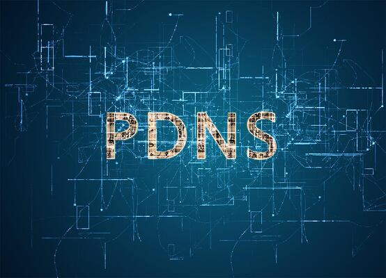 PROTECTIVE DNS SECURITY or PDNS: What You Need to Know