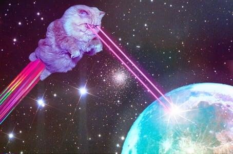 laser cat.jpg